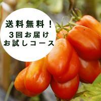 【送料無料】ちょっと少なめ「有機・無農薬で栽培した西日本の野菜セット」お試し3回コース