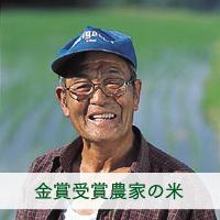 金賞受賞伊東陽一郎さん作 減農薬・有機質肥料100%のお米