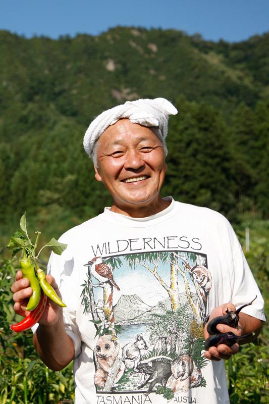 農薬 トウモロコシ