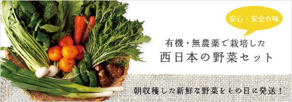 西日本産の野菜セット